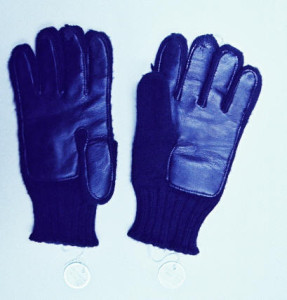 Gloves_photo_published1-1-96